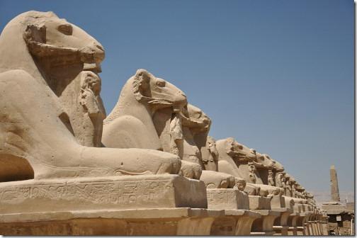 23 Egypt 177
