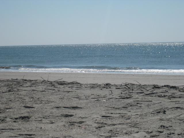 [beach09 005[5].jpg]