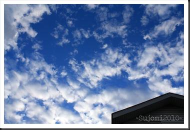 2010 11 04 IMG_4915w