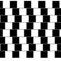 lineas paralelas.jpg