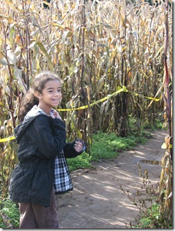 Scholz Pumpkin Farm 019