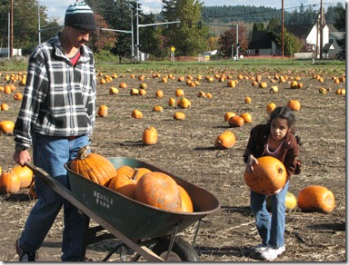 Scholz Pumpkin Farm 078