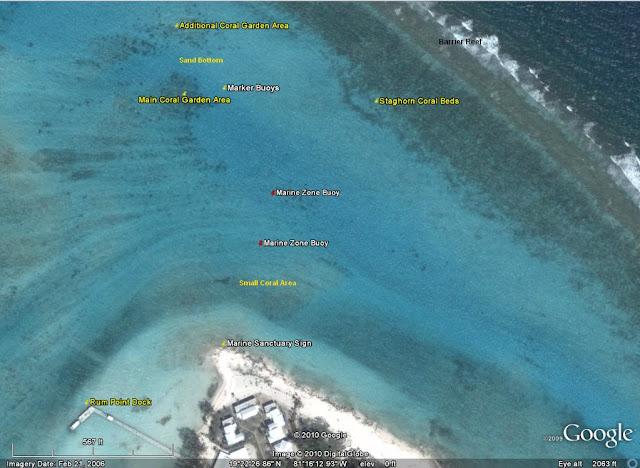 Snorkel Guide