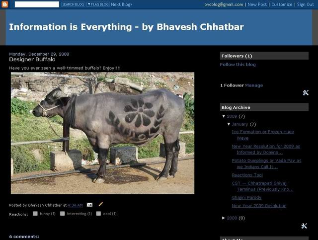 Information is Everything - by Bhavesh Chhatbar