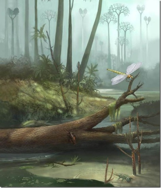 Ancient Giant BugsAncient Giant Insects