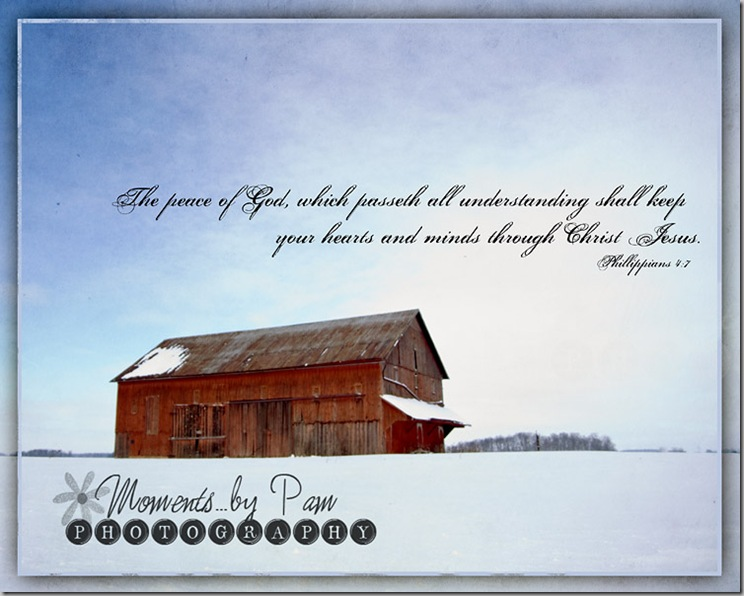 snowy day 118 Phil 47 2 copy