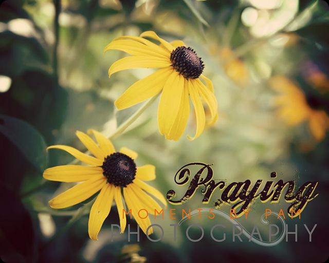 Susans Praying 063 copy