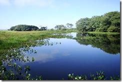 Parque Nacional da Ilha Grande - PR e MS