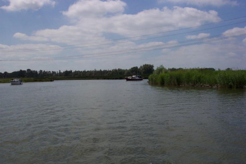 Biesbosch (35).JPG