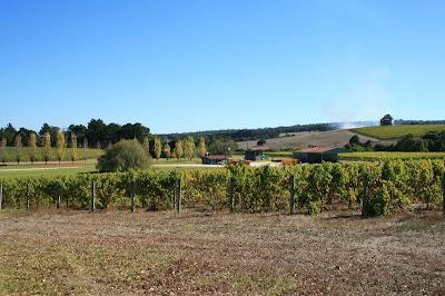 Margaret River Wine Region Western Austraila