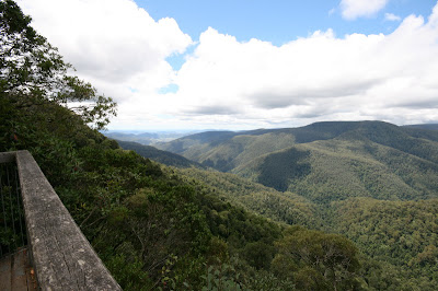 Barrington Tops National Park New South Wales Australia