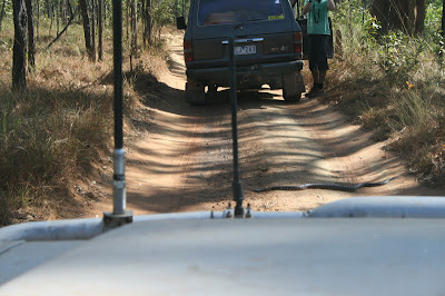 Old Telegraph Track Cape York