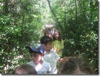 Δάσος-Δελασάλ-(2)