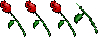 3.5roses.YsRY5l8NQE90.jpg
