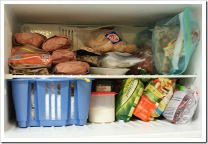 freezer 4