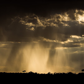 The Rains Come In by Georgia Darlow - Landscapes Weather ( mara, kenya, weather, landscape, maasai, rain )