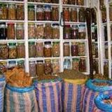 Les algériens de plus en plus attirés par les plantes médecinales