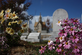 Oakland Cemetery without Lab Color Curves
