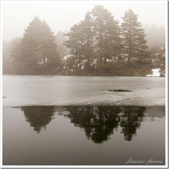 La Barranca, entre la niebla.