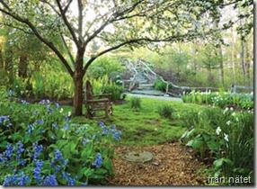 img_love-a-garden_ss3