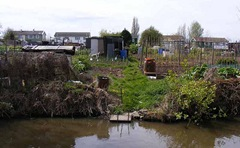 allotments from canal