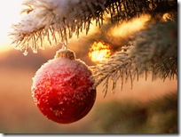 Christmas-new-year-wallpapers (46)