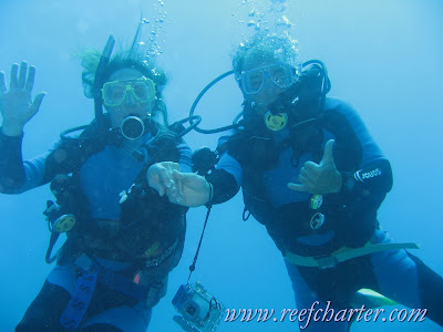 Great Diving on the Great Barrier Reef, Cairns