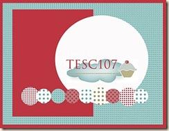 TESC107