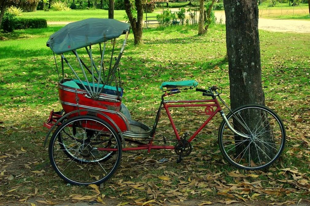 Рикшу можно нанять для поездки по городскому парку