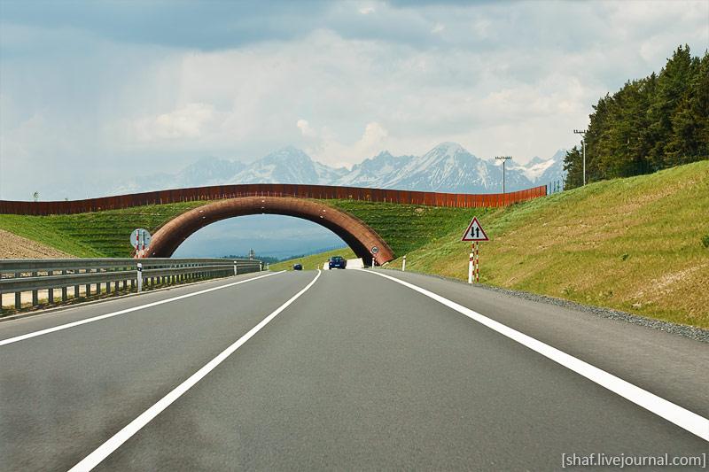 http://lh3.ggpht.com/_p9j-6xLawcI/S-_mP8QEP_I/AAAAAAAAT7k/X8P1UA2qVTw/s800/20090510-135752_Slovakia.jpg