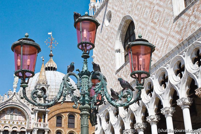 http://lh3.ggpht.com/_p9j-6xLawcI/S9jVY4Cb6OI/AAAAAAAATP0/JHN_5zQYD-E/s800/20100411-123926_Venice.jpg