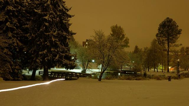 2010-10-23 Umea First Snow 022
