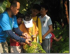 綠色柯南活動紀錄20090709 087