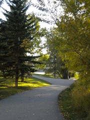 fall-walk8