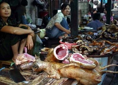 Os violentos comedores de cachorros na China (vídeo)