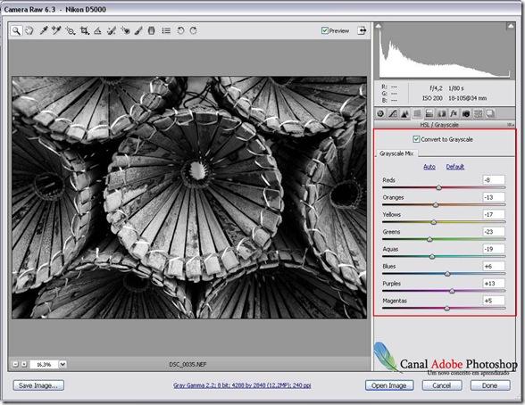 Converter imagem em preto e branco no camera raw 00001