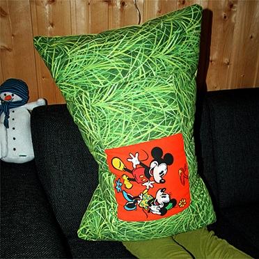 Ben pillow 500