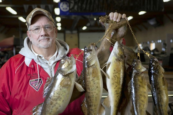 William Guerrini, a longtime Spring Valley resident, holds walleye he caught in the Illinois River. (David Pierini, Chicago Tribune / January 26, 2010)<br />