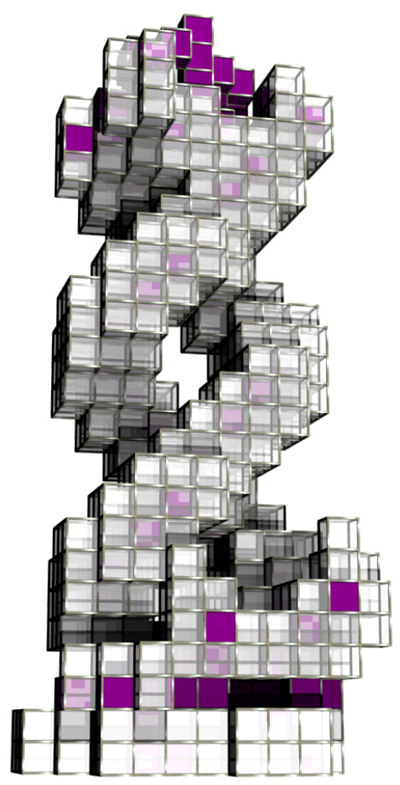 Evolved structure with a double-helix form. Senatore, 2009