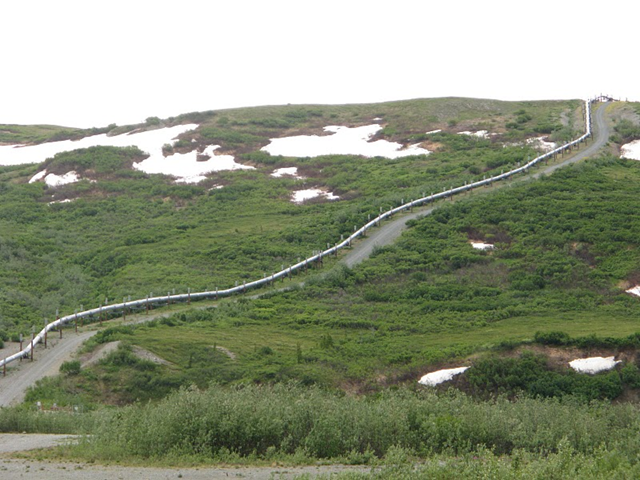 Trans-Alaska pipeline passes through the tundra (阿拉斯加油管穿過凍原), Jun 18, 2009. Wan-yun / flickr