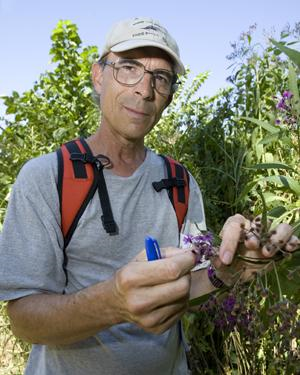 University of Cincinnati biologist Denis Conover has done extensive plant studies in Hamilton County Parks and the Oxbow area. Here he studies a specimen at Burnet Woods. Image courtesy of University of Cincinnati