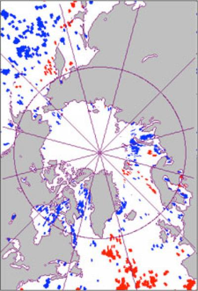 Significant trends toward earlier phytoplankton blooms (blue) were detected in about 11 percent of the area of the Arctic Ocean closest to the North Pole, delayed blooms (red) were evident to the south. Credit: Scripps Institution of Oceanography, UC San Diego