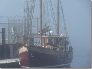 P1010077 Saint John port