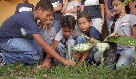 Escola-Estadual-Sebastiao-Augusto-Loureiro_ACRIMA20101105_0001_13