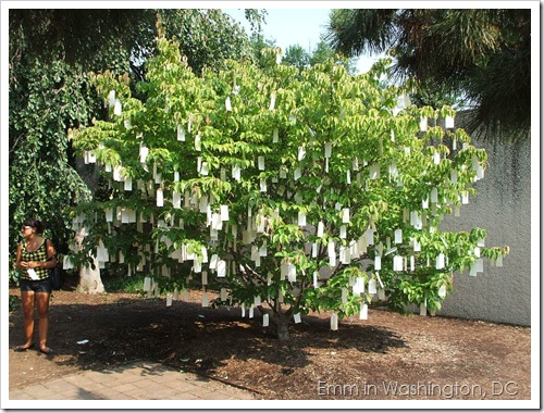 Yoko Ono's Wish Tree for Washington, DC, 2007