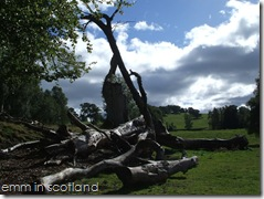 Loch Monzievaird (60)