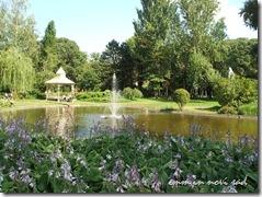 Dunavski Park, Novi Sad (5)