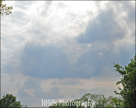 2010 04 21_1623watermarked