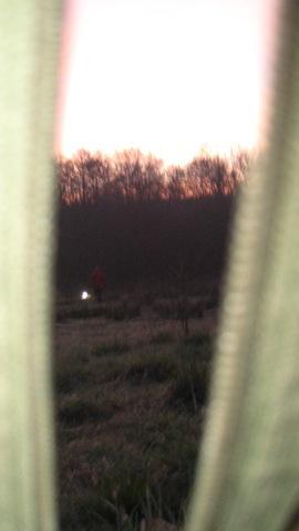 Muxton Marsh Moth Night 090410 035