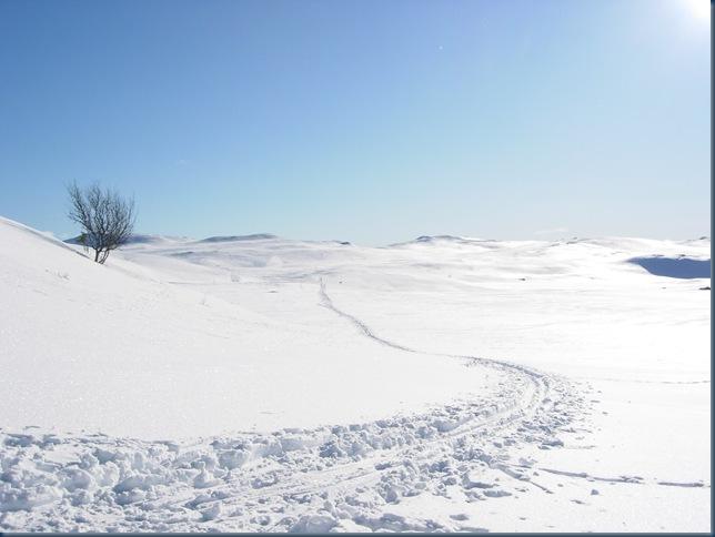Vinterfwerie 006